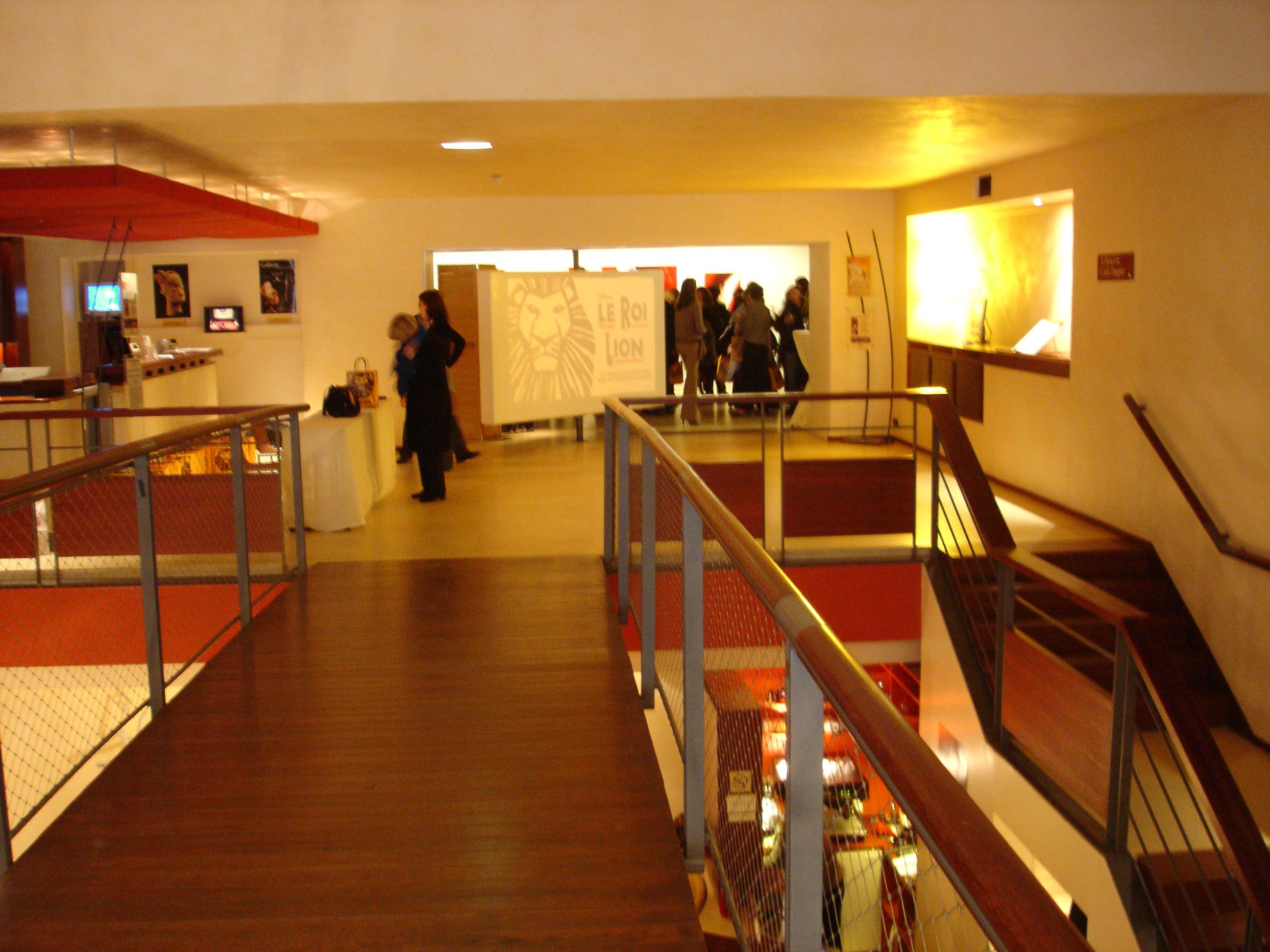 Conférence de Presse de Julie Taymor Le Roi Lion - Hall Musée Dapper