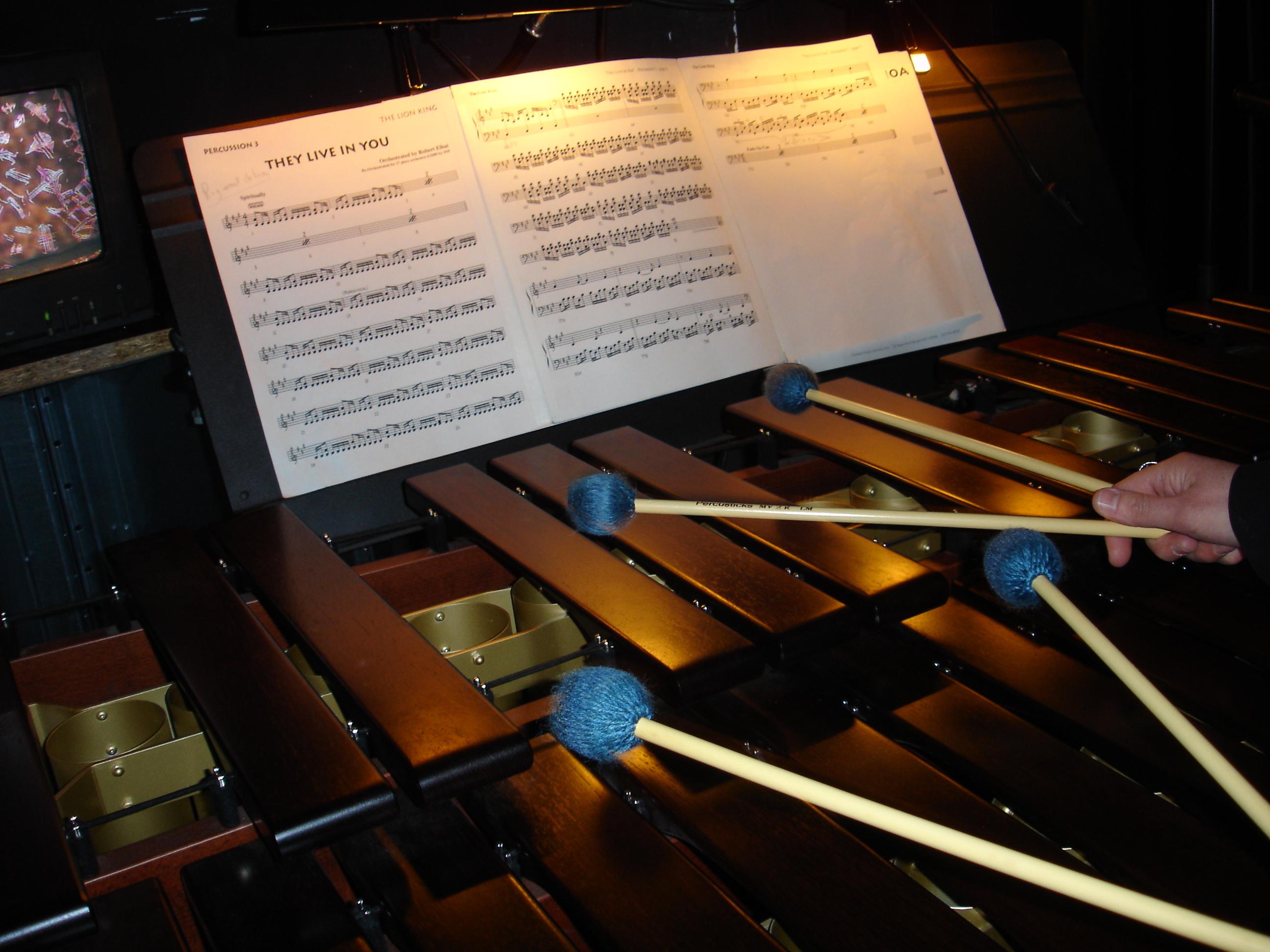Le marimba - L'orchestre du Roi Lion
